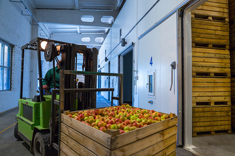 Food Forklift in warehouse